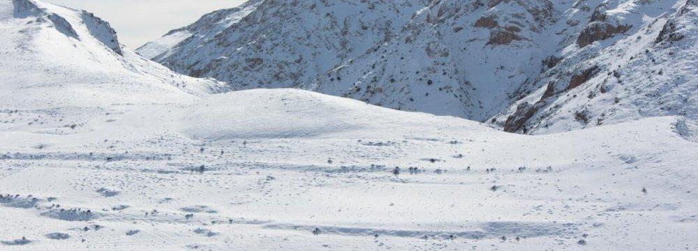Abfa Reports 69% Decline in Snowfall