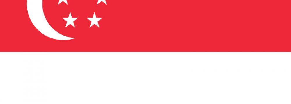 Singapore Ties