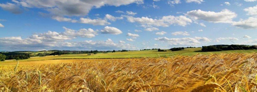 Iran Prepared for Agricultural Boom