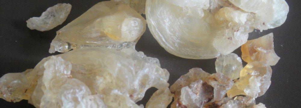 Tragacanth Gum Exports