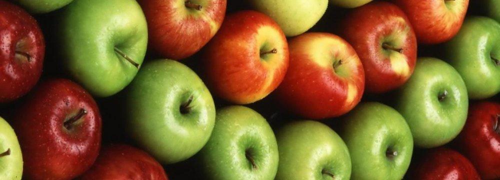 Apple, Orange Exports