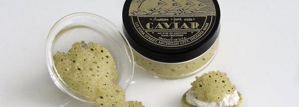 Caviar Export