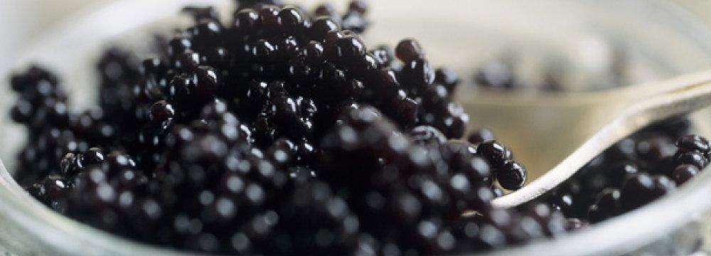 Caviar Exports