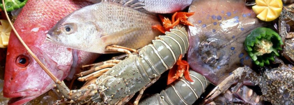 Genetically Modified Seafood Project