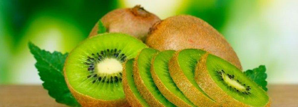 Kiwi Exports
