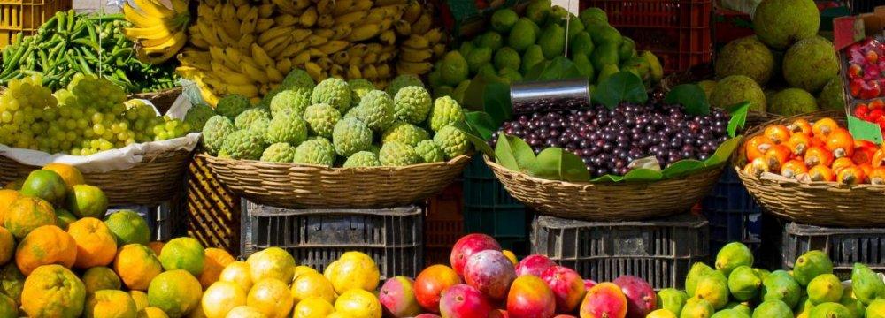 Tehran Fruit Production