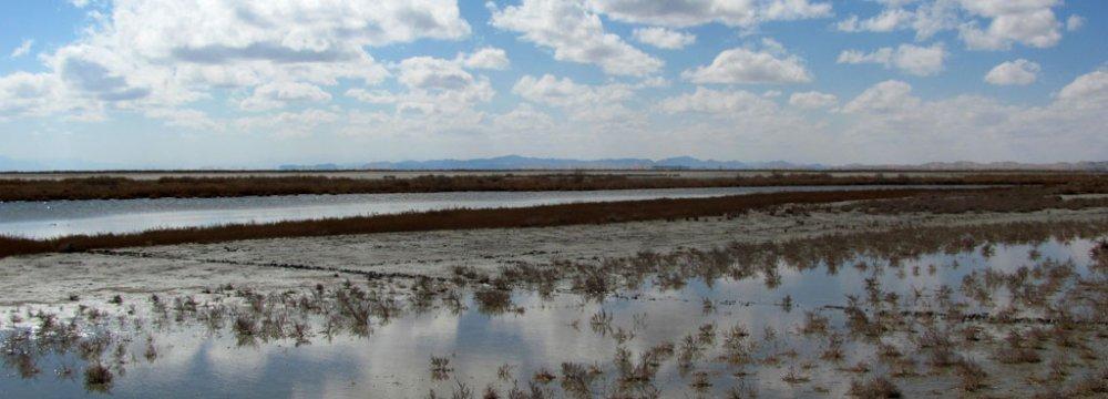 Water Shortage Biting Agribusiness