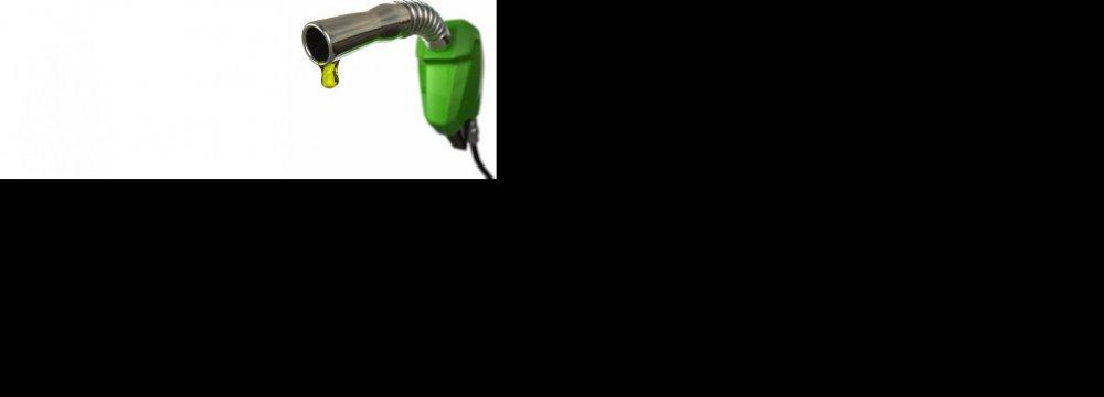 Gasoline  Imports Halved
