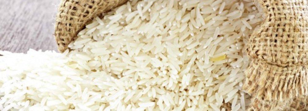 Rice Dominates IME