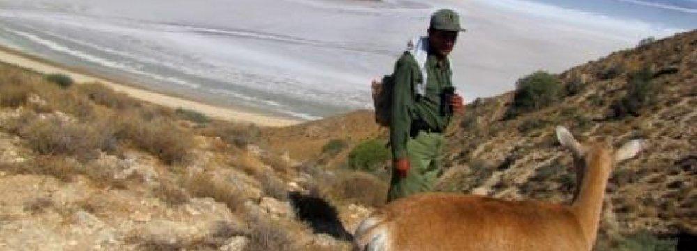 Environment Volunteers