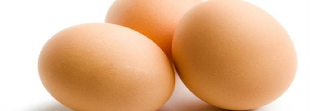 Researchers Make SPF Eggs