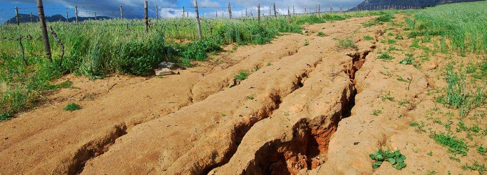 Soil Bill