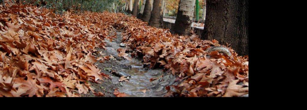 Greening Tehran to Help Improve Air Quality