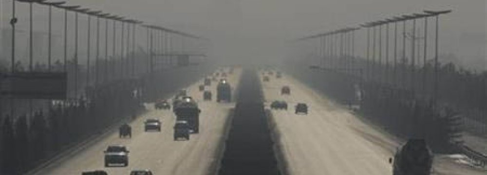 Families Paying 'Pollution Toll'