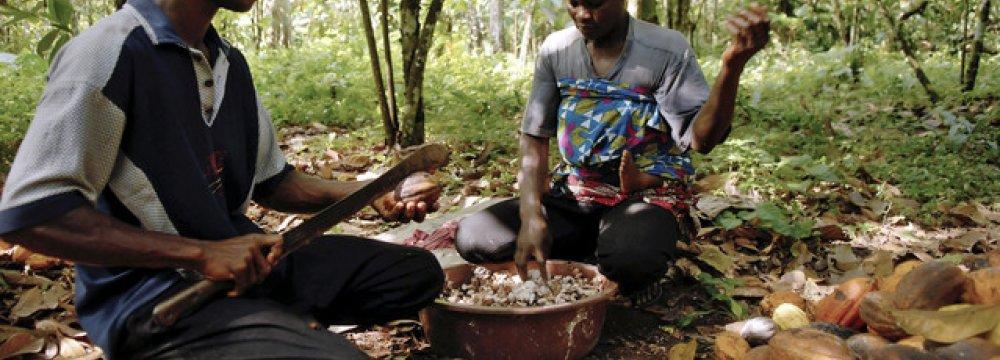 Ivory Coast Cuts GDP Growth