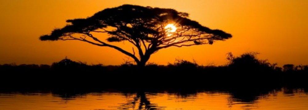 Sub-Saharan Economy  to Grow