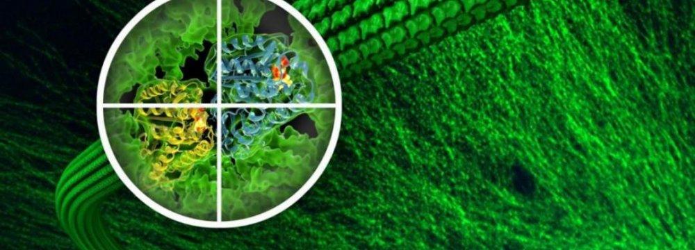 New  Anti-Cancer Drug Developed