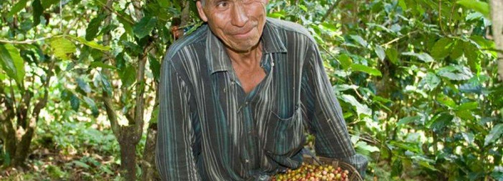 Guatemala's Poor Getting Poorer