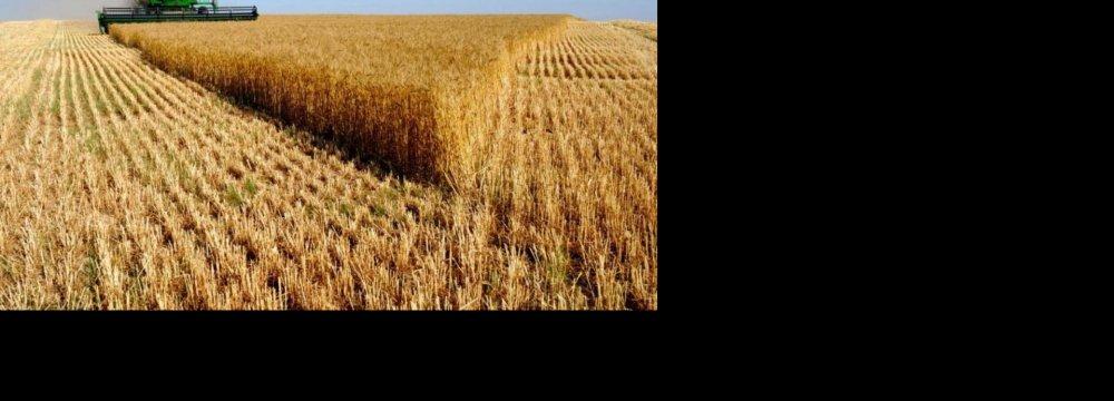 Accelerate Farm Modernization, Says Jahangiri