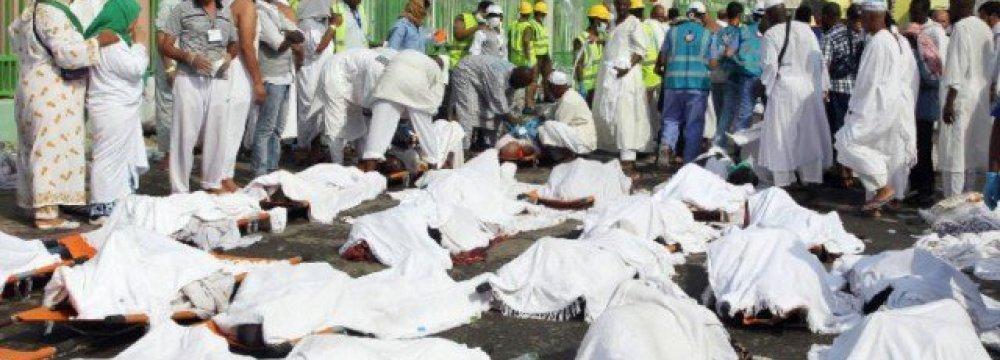 Ohadi: 226 Deaths in Hajj Crush
