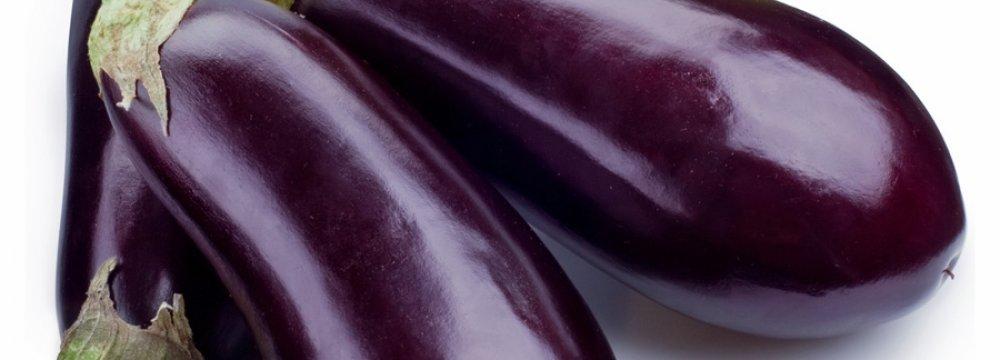 Opium Hidden in Eggplants Seized at IKIA
