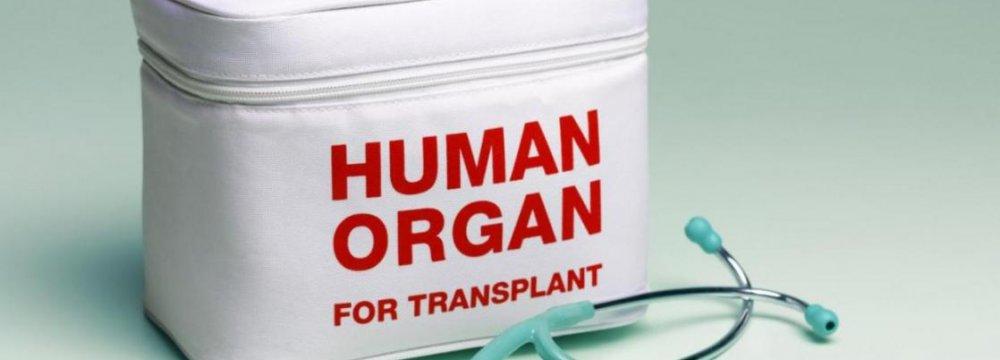 Organ Donations Rise