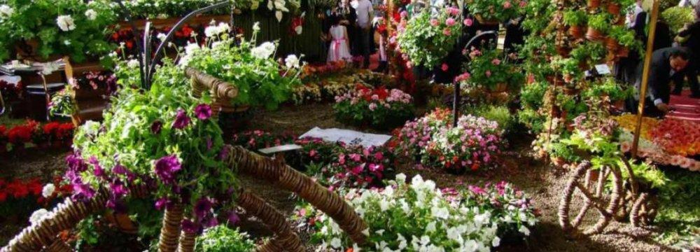 Mahallat, Cradle of Flowers