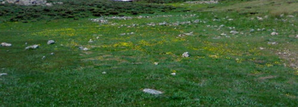 Tang-e Sayyad Iran's 11th Biosphere Reserve