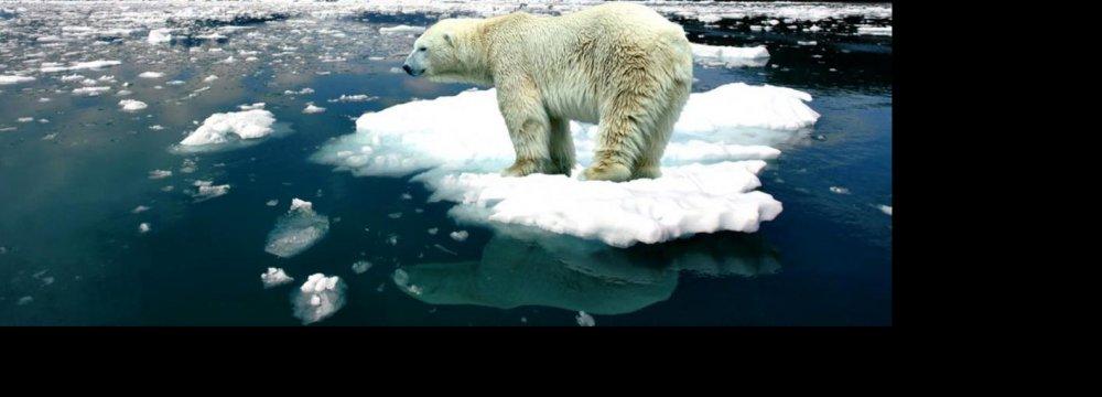 World Temperatures Up 1° Celsius