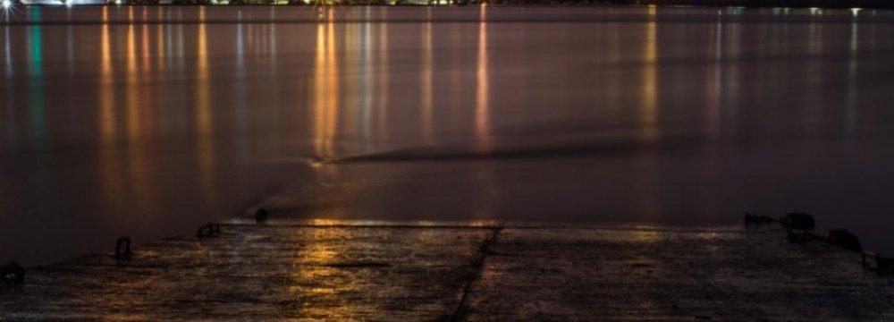 Coastal Light Pollution Disturbs Marine Animals