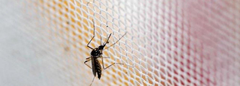 IATA Wary of Zika Effect