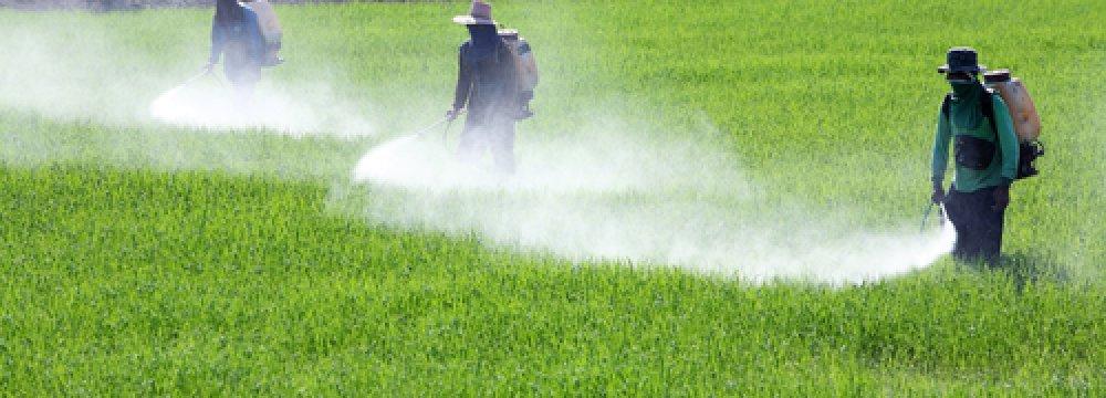 Pesticide Use Above Global Average
