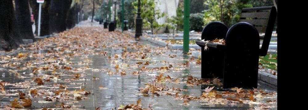 Rains Bring Some Respite