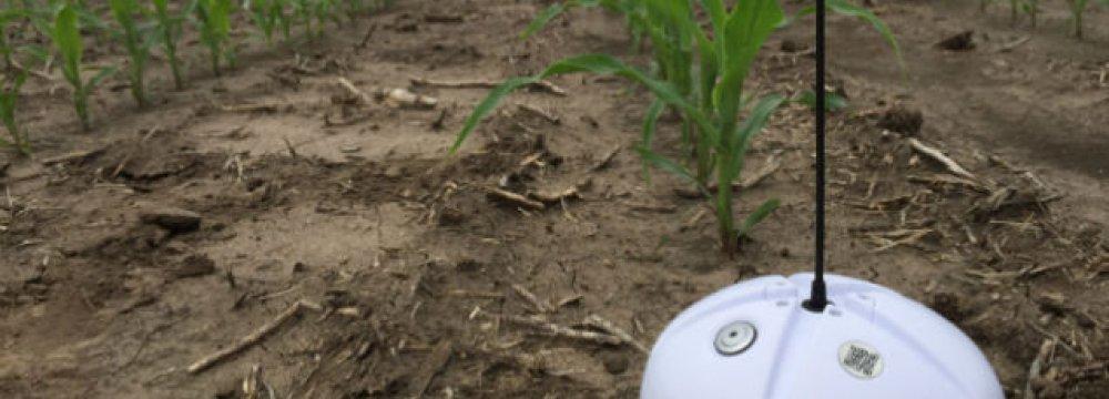 Sensors Cut Farm Water Use By a Quarter