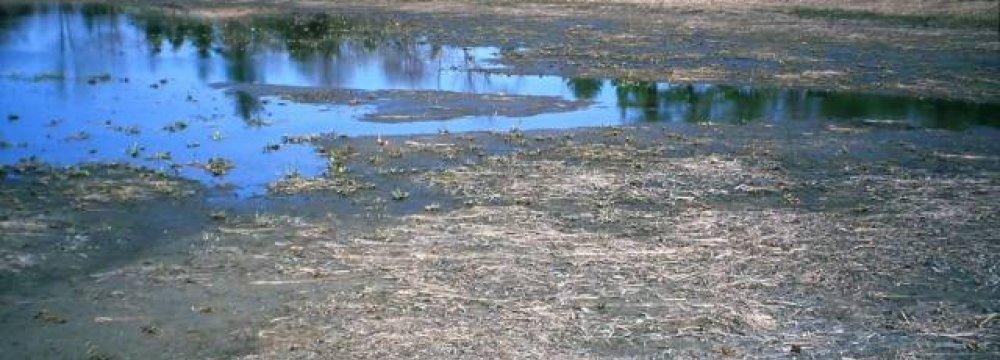 Desiccation of Fars Wetlands Surveyed