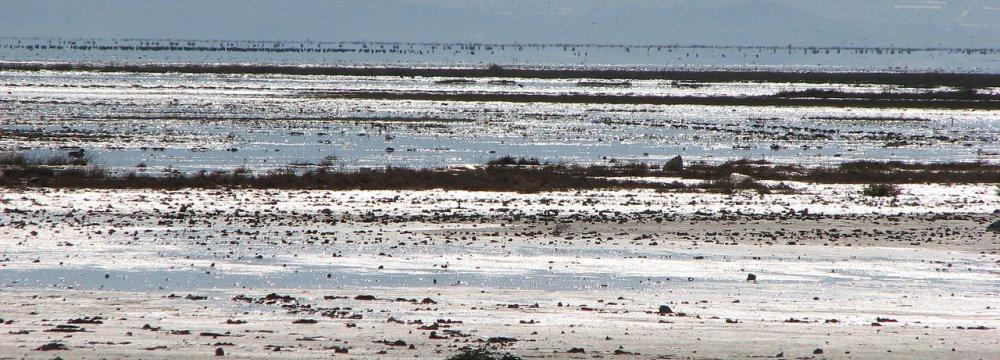 Rain Gives Fars Wetlands a Break