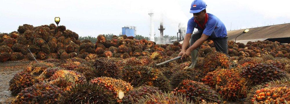 SE Asia Can Outperform  Developed Asian Economies