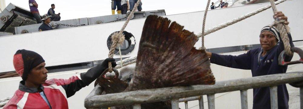 Thailand Could Lose $1b p.a. to EU Fish Import Ban