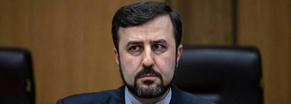 Iran, IAEA Set Up New Joint Projects