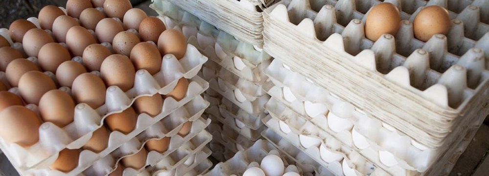 Egg prices have reached as high as 210,000 rials ($5.01)  in some markets.