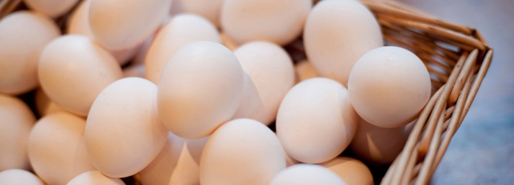 Need for Egg Imports to Continue for  6 Months