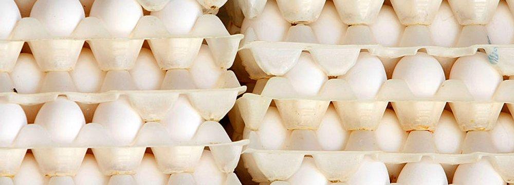 Egg Prices Begin to Slide