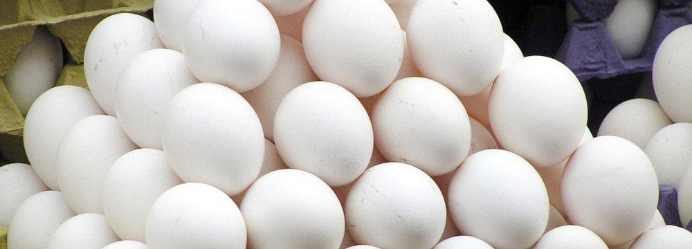 Gov't Allocates $24m as Compensation for Chicken Farmers