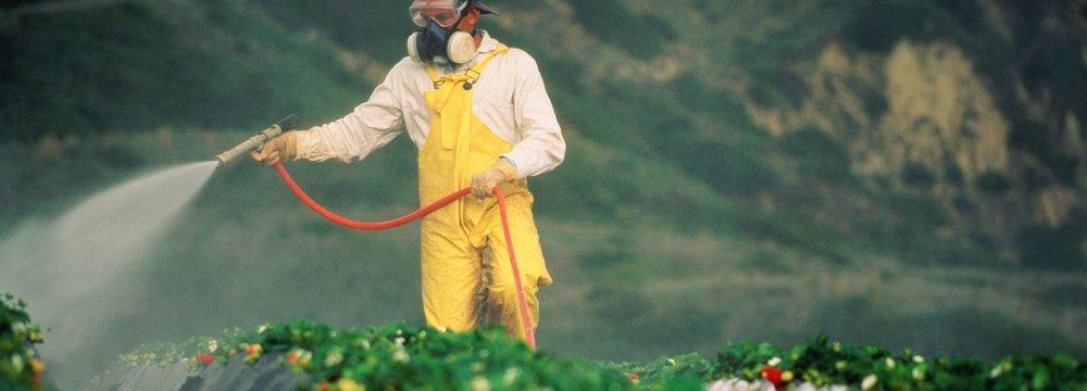 Pesticide Production Meets 80% of Domestic Demand