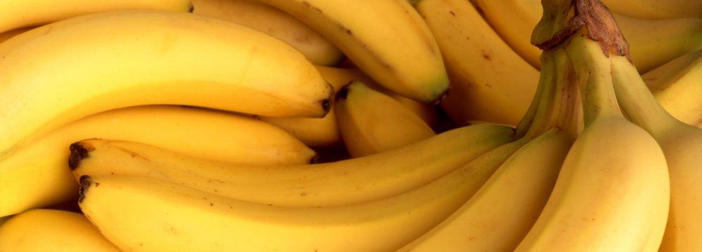 Banana Shipment From Philippines Next Week