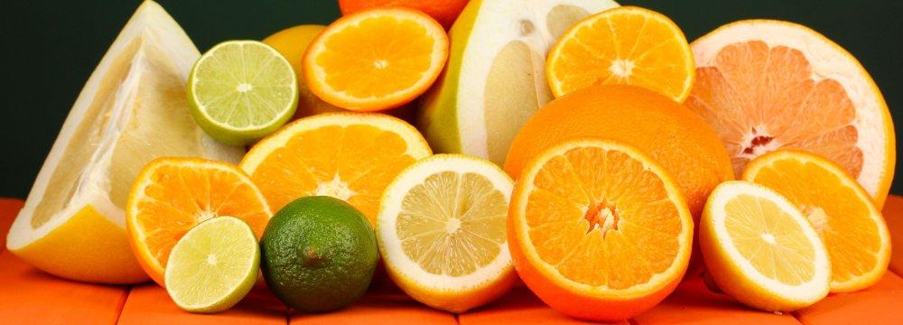 Rise in Mazandaran Citrus Exports