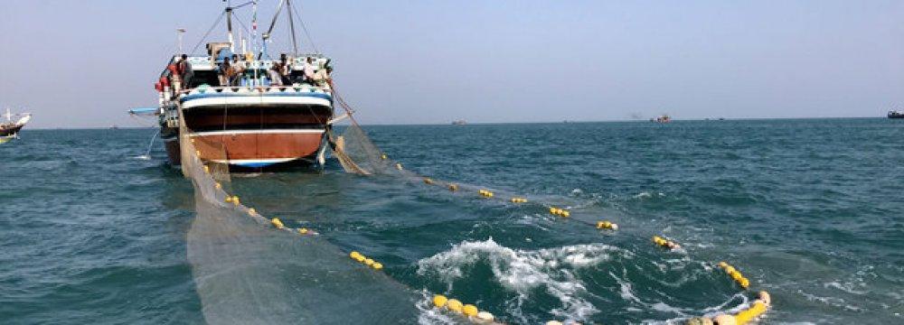 Caspian Fishing Season Starts
