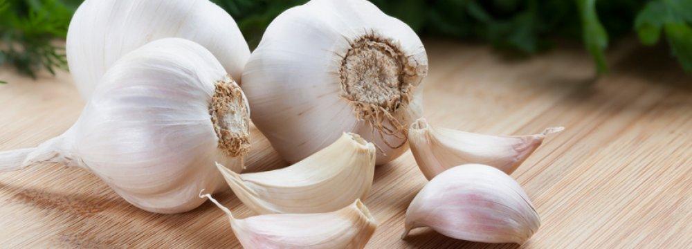 Garlic Exports Exceed $1m