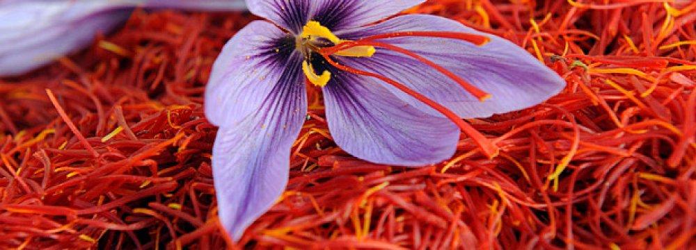 Saffron Exports Earn $92m