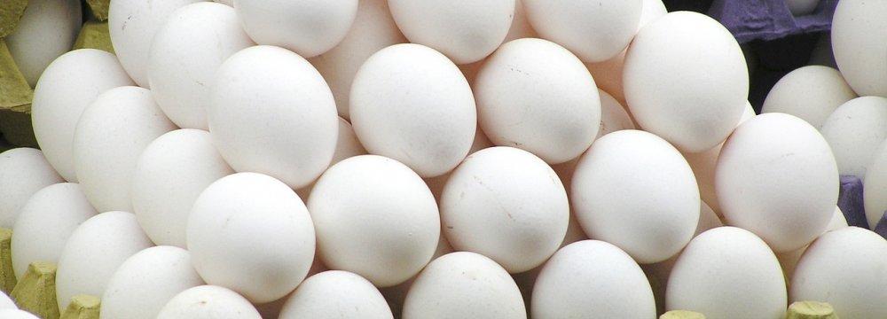 160K Tons of Surplus Eggs p.a.